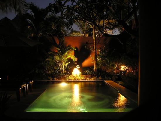 The Dusun: Pool by night