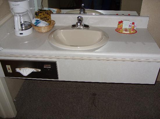 Econo Lodge Inn & Suites: Sink
