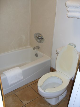 Budget Inn Conway: Bathroom
