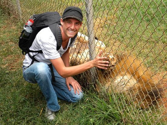 Nairobi Education Centre - Animal Orphanage: closest I will ever get to a lion!