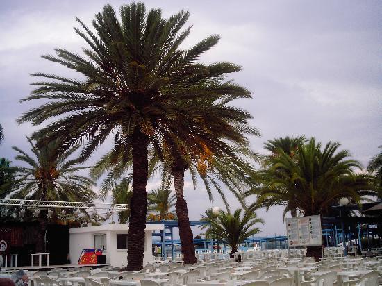 El Mouradi Port El Kantaoui: spazio animazione