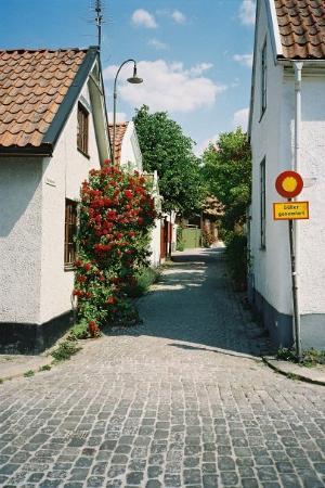 Gotland, สวีเดน: Visby - rosornas stad.