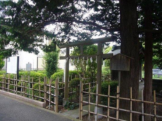 Chofu, Japan: 大きな木が目印