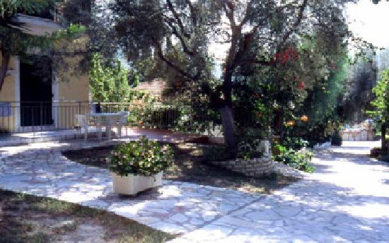 Geni, Греция: Beautiful Appartments in amongst the Olive trees, with fruit trees like Fig, Lemon and Banana
