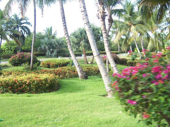 Meliá Caribe Tropical: Preciosos Jardines