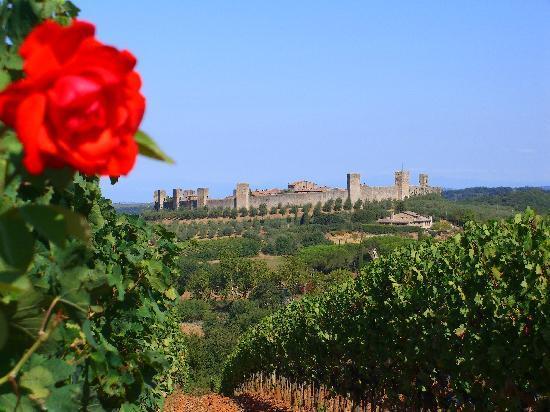Hotel Monteriggioni: Castello Monteriggioni from a monastery vineyard
