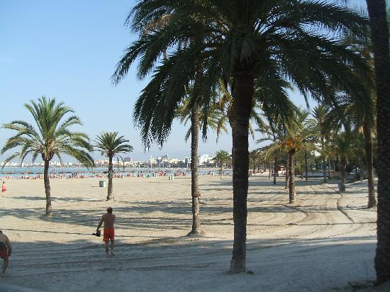Costa Mediterraneo: Beach