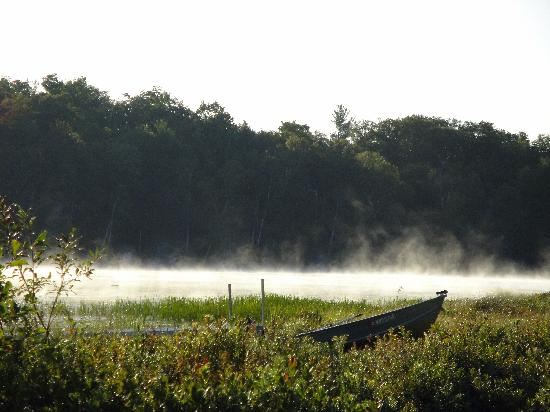 Branch Farm Bed & Breakfast: the lake in the morning