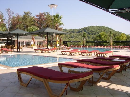 Green Forest Hotel: The pool