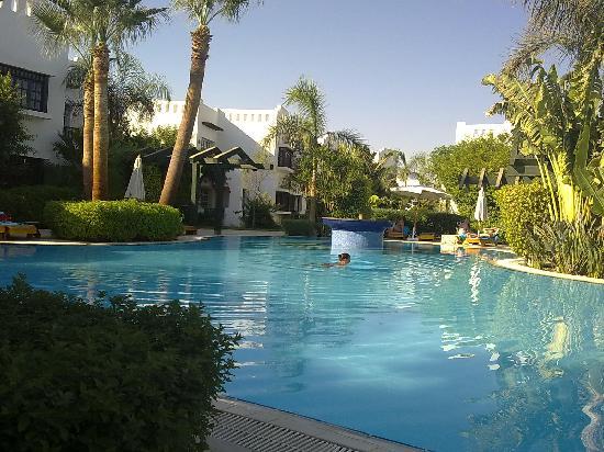 Delta Sharm Resort: Just 1 of the 12 pools