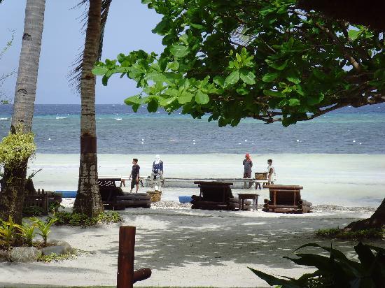 安納亞納海灘渡假村張圖片
