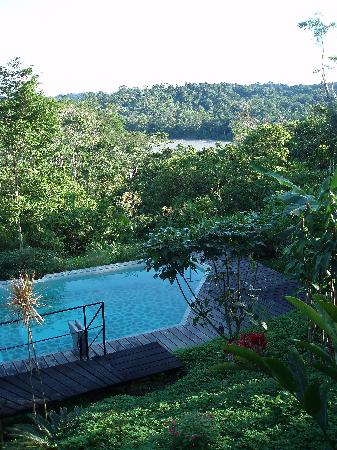 Hamadryade Lodge: Swimming Pool