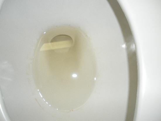 Holiday Inn Express At JFK: Brown water in the toilet
