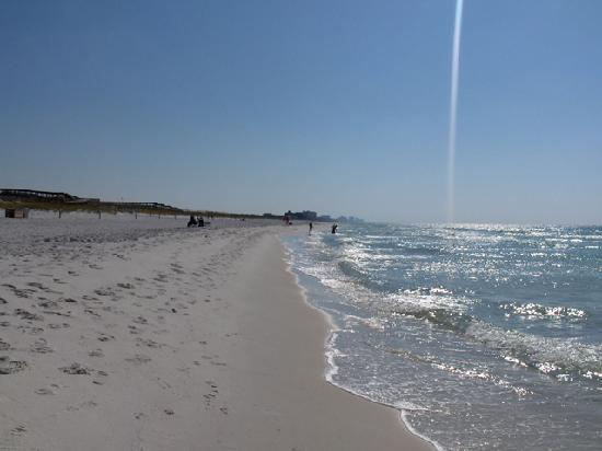 เดสติน, ฟลอริด้า: son Beach State Park Sept 8th 2009
