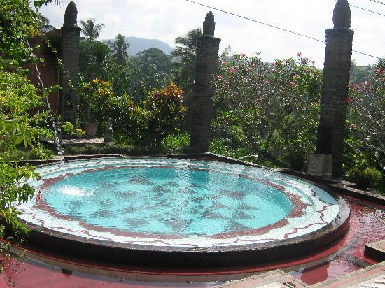 Shankari's Bali Retreat: One of the 3 pools