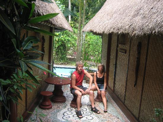 Shankari's Bali Retreat: Between the 2 houses