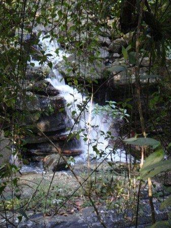 Parc national Manuel-Antonio Photo