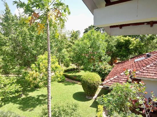 Pelwehera Village Resort : View of gardens from our balcony