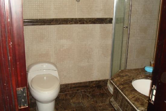 Manazel Al Ain Mercure: another toilett