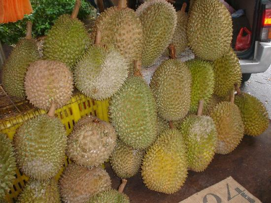 Hotel Lusa: Durian