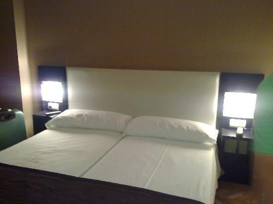 Hotel Carlos III : habitacion 110