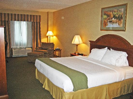 Holiday Inn Express Hotel & Suites Drums-Hazelton: King Room