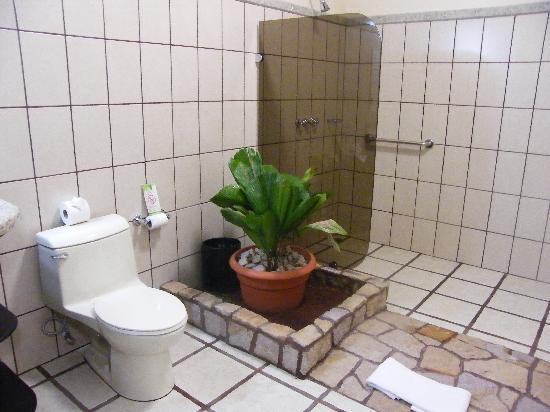 Arenal Manoa Hotel: baño