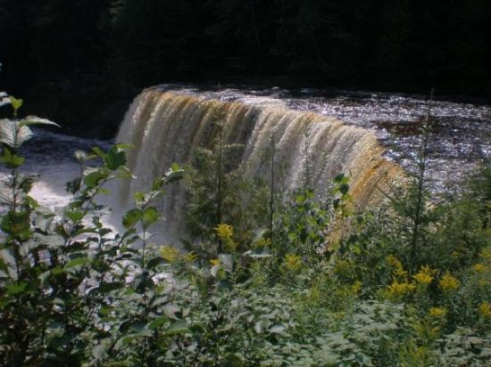 Tahquamenon Falls State Park: Taquamenon Falls, Mi 9/4/09