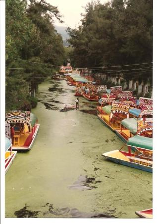 Floating Gardens Of Xochimilco Mexico City 2018 All You Need To Know Before You Go With