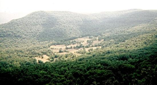 Mountain Home, AR: Ozarks