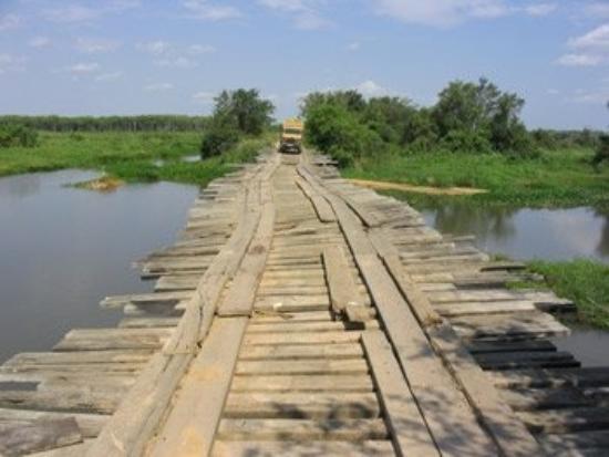 Poconé, MT: Pantanal