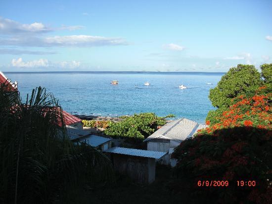 Coral Lane Beach Apartments: View