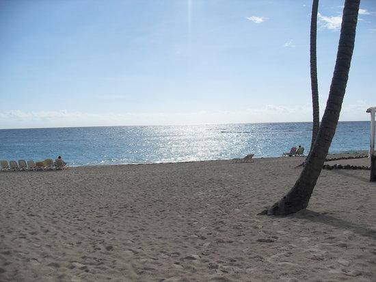 Majestic Colonial Punta Cana : beach