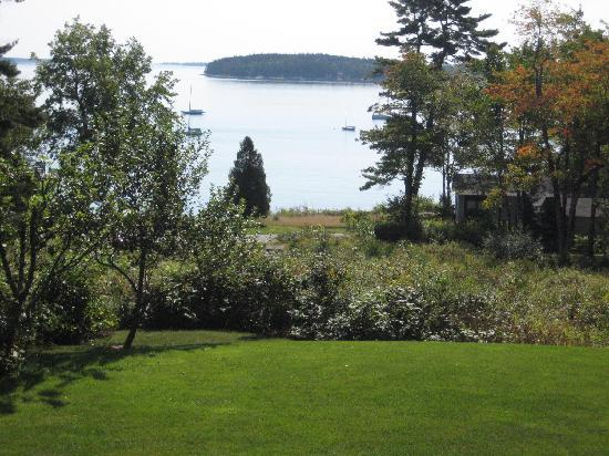 The Birches Bed and Breakfast: shoreline