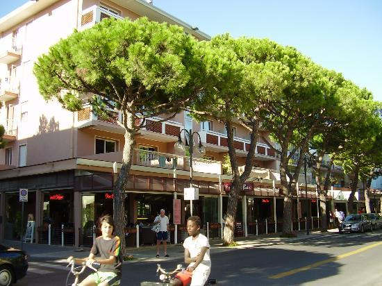 Hotel D'annunzio: Hotel and Friends Bar