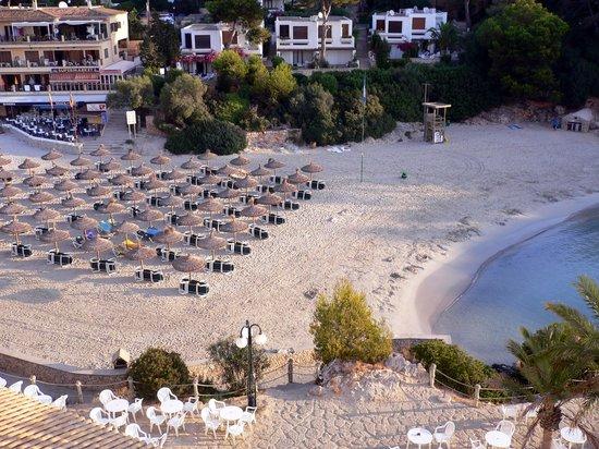 Barcelo Ponent Playa: Plage vue de la chambre