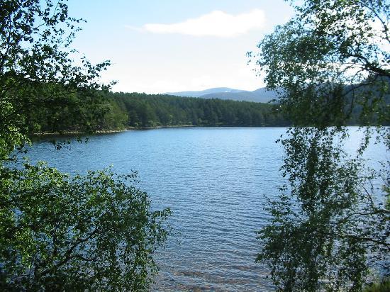 Culdearn House: Loch An Eilein, Rothiemurchus Estate