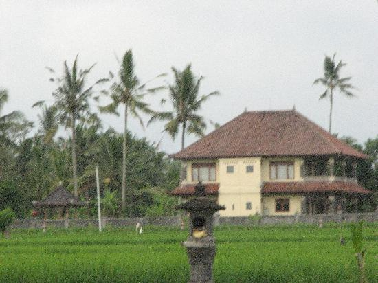 Villa Agung Khalia: The villa from the surrounding rice fields