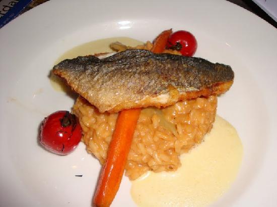 Van Harte : Seared Fish