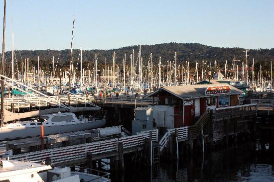 Best Western Park Crest Inn: Monterey
