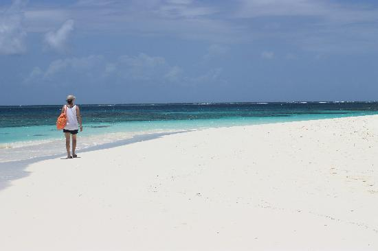Shoal Bay: The most awesome beach ever