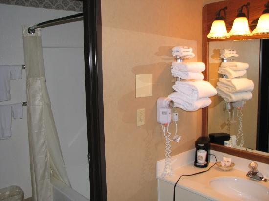BEST WESTERN PLUS GranTree Inn: Sink, bathroom