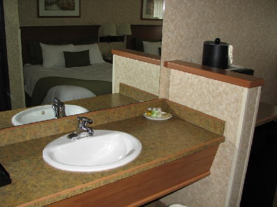 BEST WESTERN Rama Inn: Sink in the room