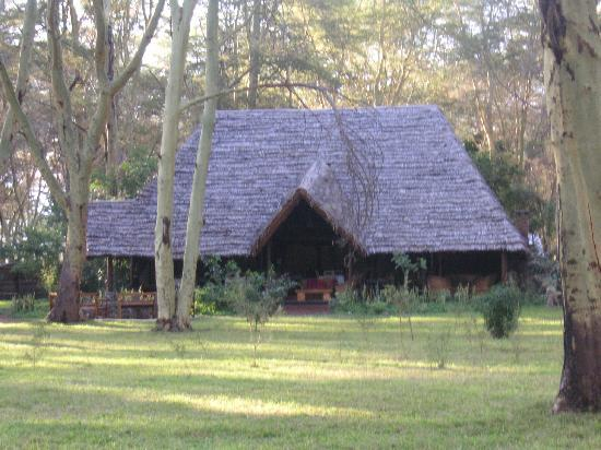 Lake Manyara National Park, Τανζανία: Restaurant - bar - reception