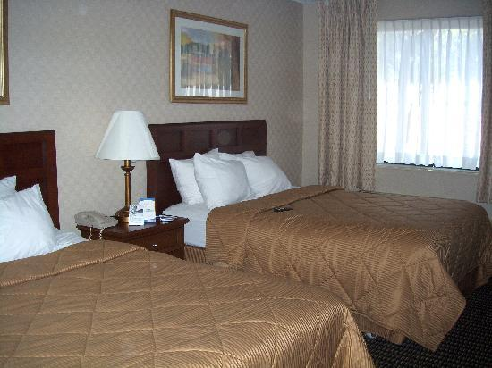 Comfort Inn Utica: looking into the room from near the door/bathroom