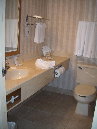 Comfort Inn Utica: bathroom