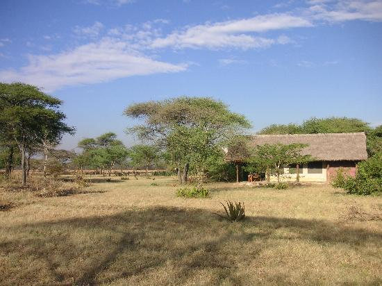 Serengeti Tented Camp - Ikoma Bush Camp: Lodges in the middle of nowhere
