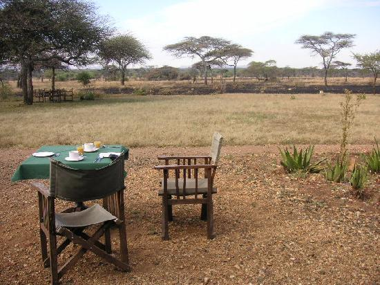 Serengeti Tented Camp - Ikoma Bush Camp: There are even a few tables outside for breakfast or after-safari-drink