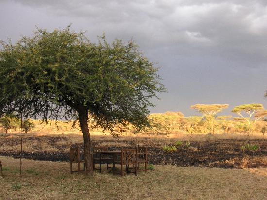 Serengeti Tented Camp - Ikoma Bush Camp: A few tables and chairs to have a rest after a days safari