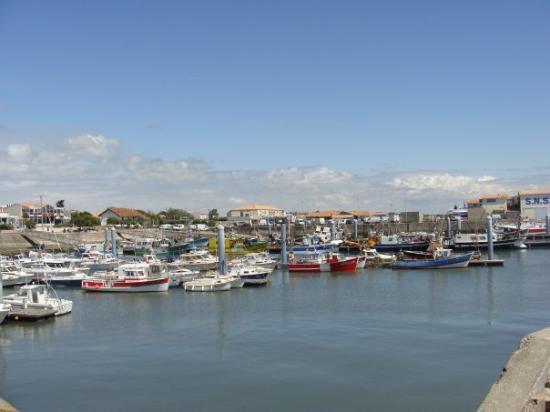 Le Port De La Cotiniere Picture Of Ile D Oleron Charente Maritime